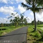 BS NHK ザ・プレミアム 井浦新アジアハイウェイを行く「イスラムの道・多民族国家の選択」でインドネシアが放送予定