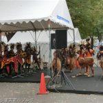 インドネシアフェスティバル2016ではパプア情報が特に充実していた