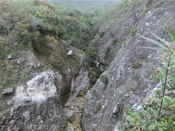 nasigoreng.blog612